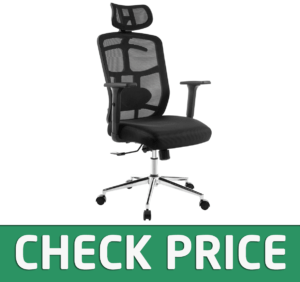 TOPSKY Mesh Computer Office Chair Ergonomic Design Chair Skeletal Back