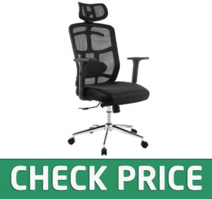 TOPSKY Mesh Computer Office Chair Ergonomic Design Chair Skeletal Back
